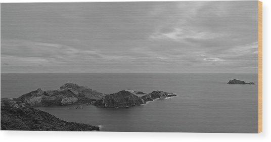 Dawn In Black And White In The Cap De Creus Wood Print