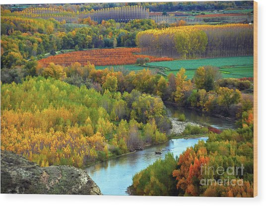Autumn Colors On The Ebro River Wood Print
