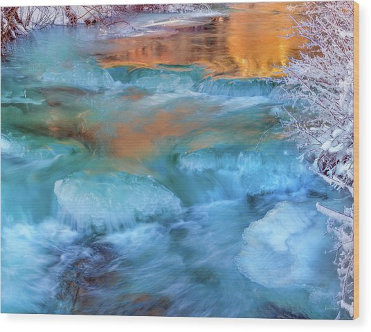 Color Of Winter Wood Print by Leland D Howard