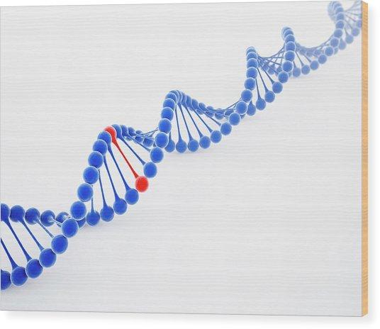 Dna Molecule, Artwork Wood Print by Science Photo Library - Andrzej Wojcicki
