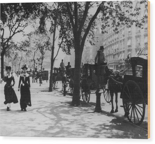Madison Square Park Wood Print by Fpg