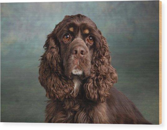 Portrait Of A Cocker Spaniel Dog Wood Print