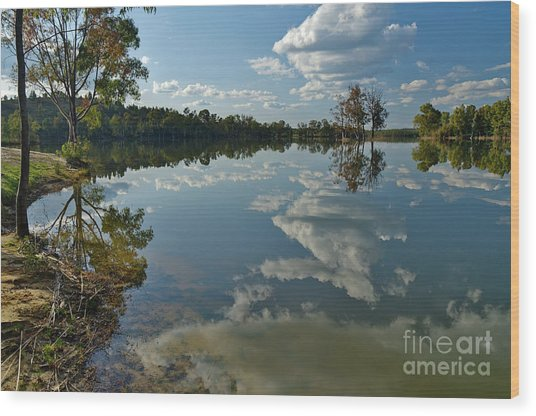 Reflections By The Lake Wood Print