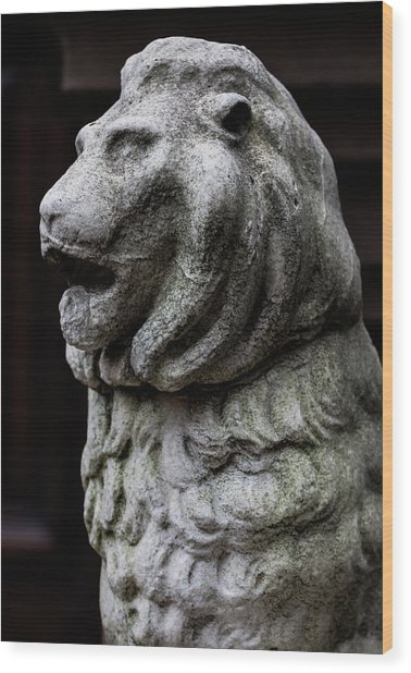 Stone Lion Wood Print by Robert Ullmann