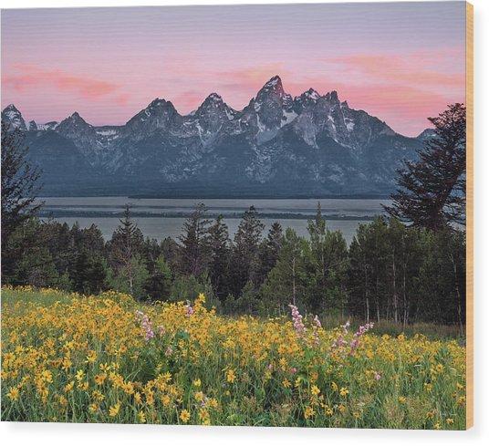 Teton Spring Wood Print