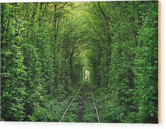 The Tunnel Of Love In Western Ukraine Wood Print