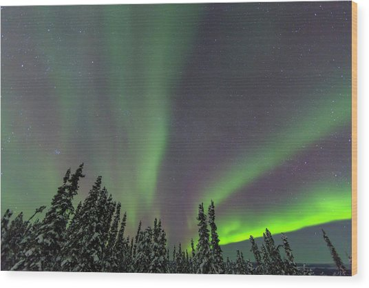 Aurora Borealis, Northern Lights Wood Print by Stuart Westmorland