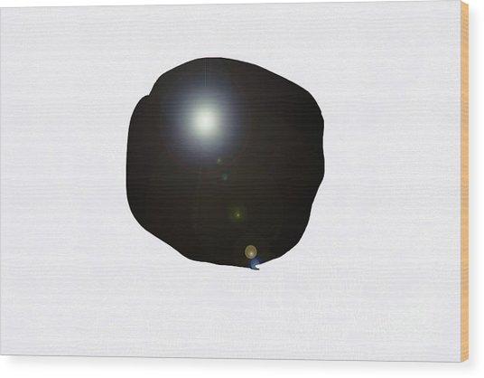 3-12-2009a Wood Print