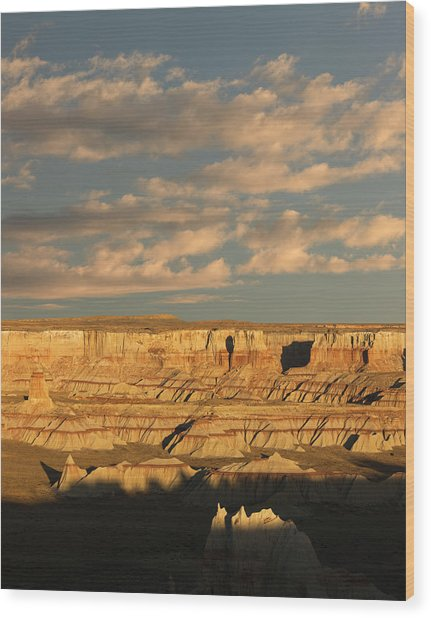Coal Mine Canyon Near Tuba City Wood Print by Adam Jones