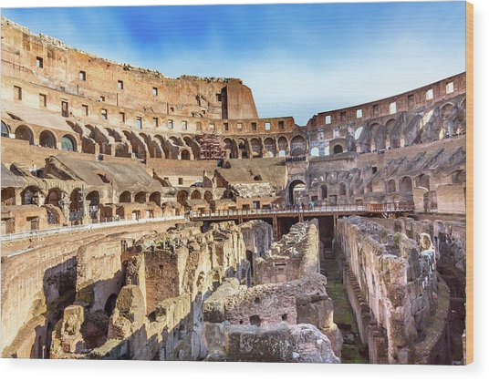 Colosseum, Rome, Italy Wood Print by William Perry
