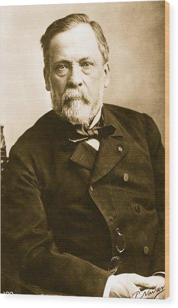 Louis Pasteur Wood Print by Paul Nadar