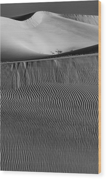 Usa, California Black And White Image Wood Print by Judith Zimmerman
