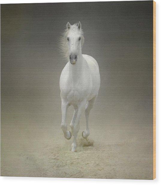 White Horse Galloping Wood Print