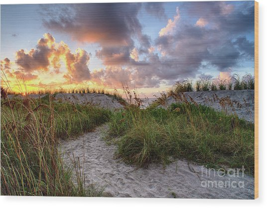 48th Ave. Sunrise North Myrtle Beach Wood Print