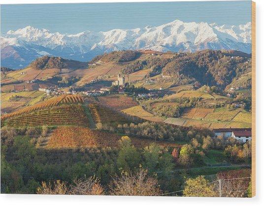 Vineyards, Near Alba, Langhe, Piedmont Wood Print