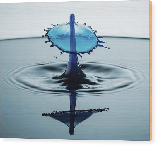 Wood Print featuring the photograph Water Drop by Nicole Young