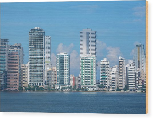 Colombia, Cartagena Wood Print by Cindy Miller Hopkins