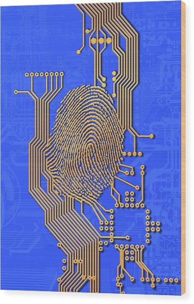 Biometric Security, Artwork Wood Print by Victor Habbick Visions
