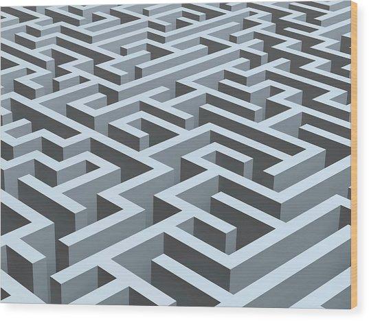 Maze, Artwork Wood Print by Pasieka