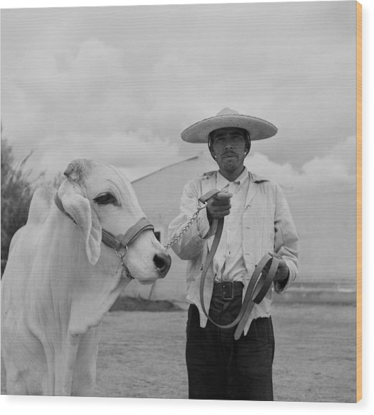 Ranching In Michoacan, Mexico Wood Print by Michael Ochs Archives