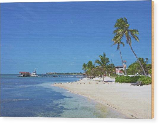 A Beautiful Scene Of A Beach Resort On Wood Print by Hendrikdb