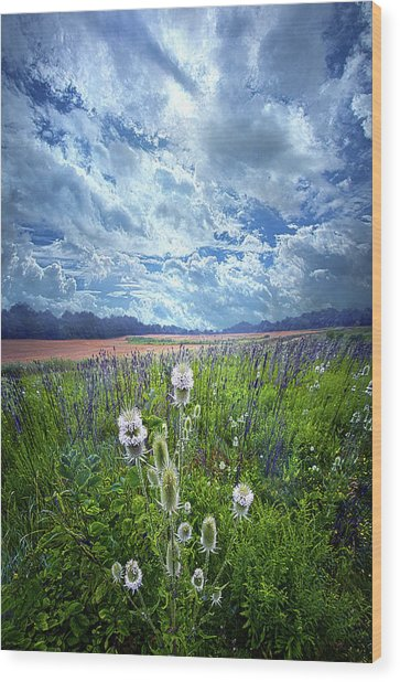 Wood Print featuring the photograph A Chance Of Rain by Phil Koch