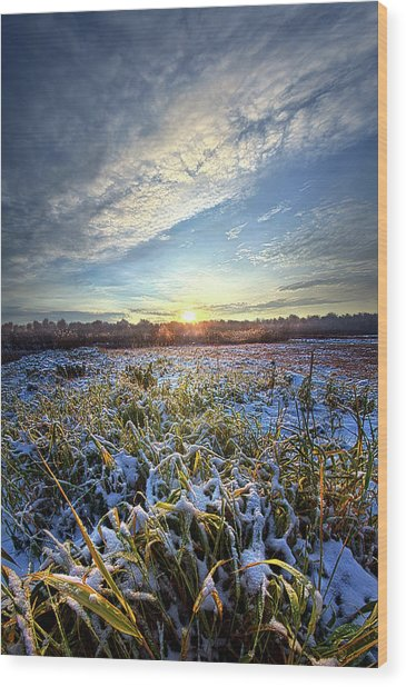 Wood Print featuring the photograph A Dream Is A Wish That The Heart Makes by Phil Koch