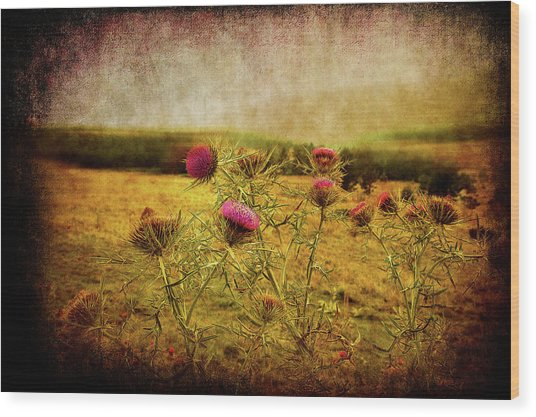 Wood Print featuring the photograph A Field Covered With Mist by Milena Ilieva