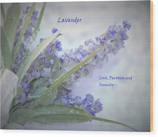 A Gift Of Lavender Wood Print