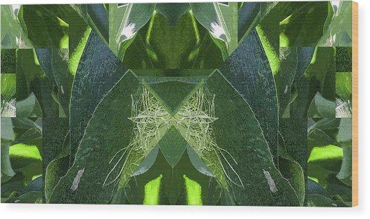 A-maize 2 - Flying Corn - Wood Print
