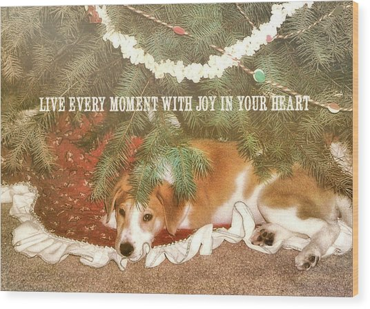 A Puppy For Christmas Quote Wood Print by JAMART Photography