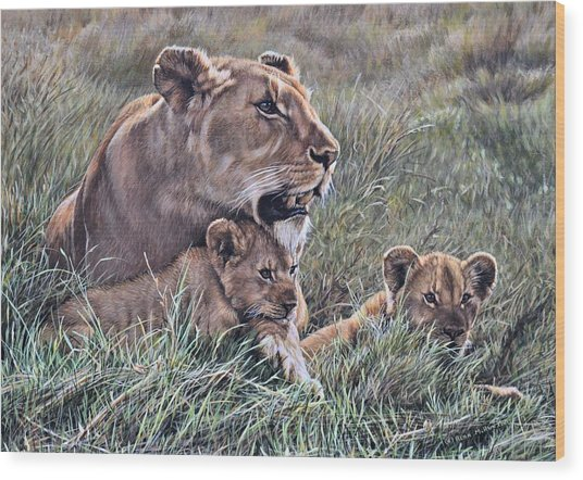Wood Print featuring the painting A Quiet Moment Lioness And Lion Cubs by Alan M Hunt