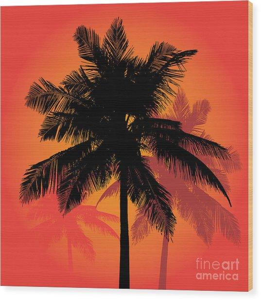 A Trio Of Tropical Coconut Palm Tree Wood Print