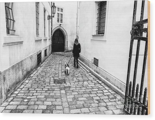 A Walk In The Old Town Quarter Prague Wood Print