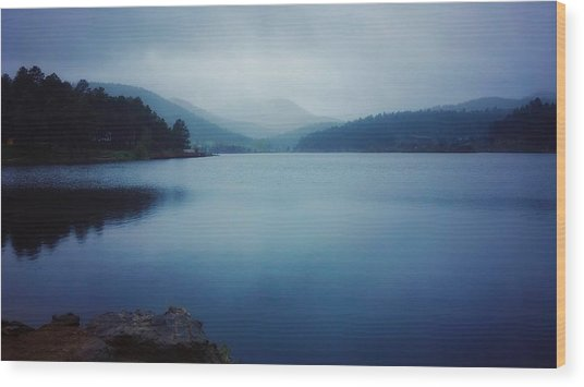 Wood Print featuring the photograph A Washed Landscape by Dan Miller