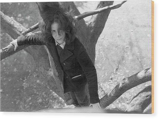 A Woman In A Tree, 1972 Wood Print