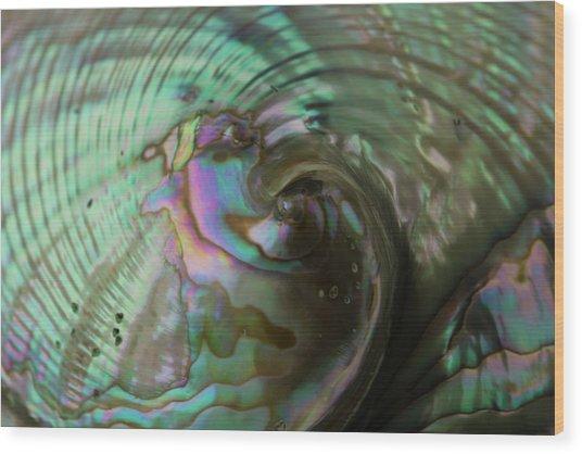 Abalone_shell_9903 Wood Print