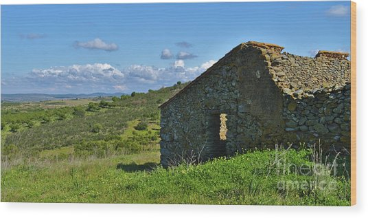 Abandoned Cottage In Alentejo Wood Print