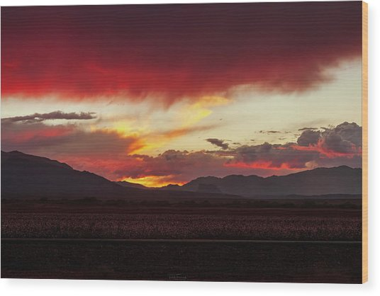 Wood Print featuring the photograph Ablaze by Rick Furmanek