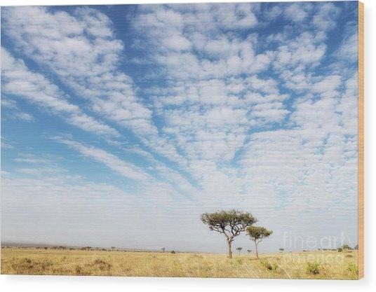Acacia Trees In The Masai Mara Wood Print