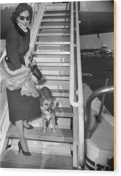 Actress Ava Gardner And Her Dog, Rags Wood Print