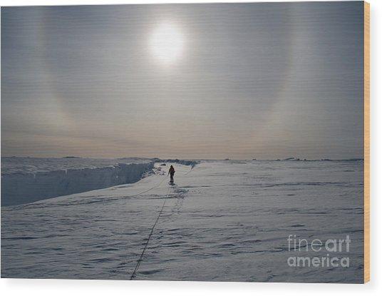 Adventures In Antarctica. Exploring The Wood Print