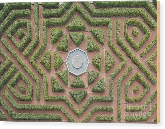 Aerial View Of A Hedge Maze Wood Print