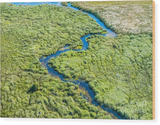 Aerial View Of A Small Stream And Lush Wood Print