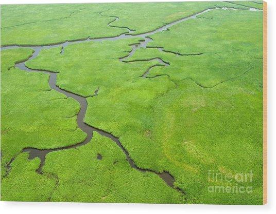 Aerial View Of Lush Coastal Wetlands Wood Print