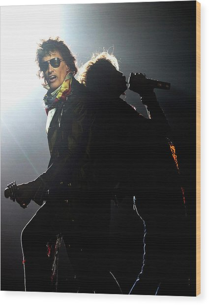 Aerosmith Live In Arnhem Wood Print