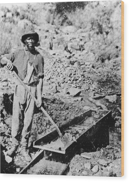 African-american Gold Miner Wood Print by Hulton Archive