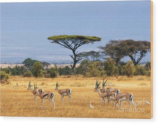 African Landscape With Gazelles Wood Print by Oleg Znamenskiy