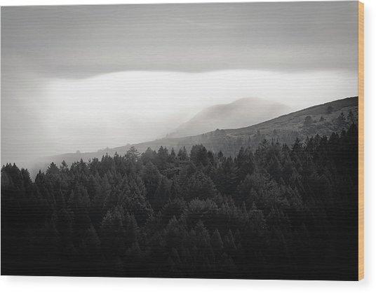 Afternoon Nap Wood Print