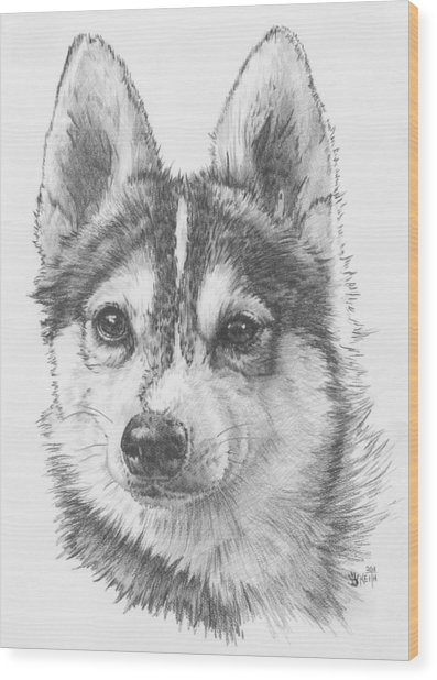 Wood Print featuring the drawing Alaskan Klee Kai by Barbara Keith